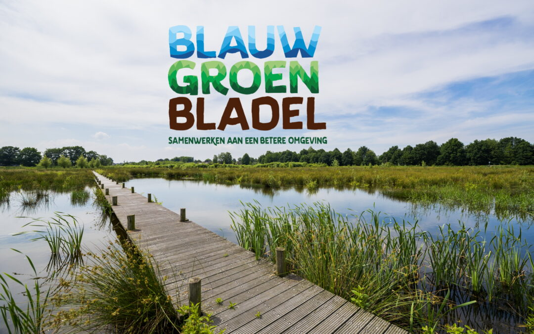 BlauwGroenBladel